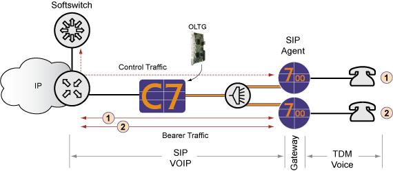 Calix C7 R9 0 VoIP Services Guide